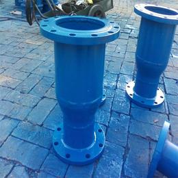 西藏滤网,安装使用方法,立式法兰给水泵入口滤网