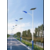 太阳能路灯 加光板6米 热镀锌喷塑 经久耐用不生锈 缩略图1