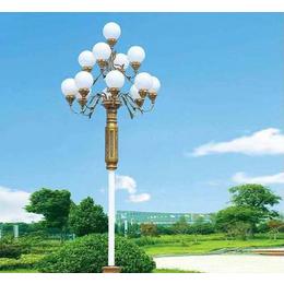 昆明呈贡玉兰灯哪家便宜-豪义照明(在线咨询)-昆明呈贡玉兰灯缩略图