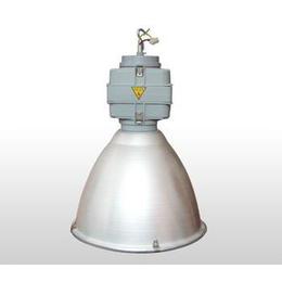 1000w 金卤灯、金耀辉灯具(在线咨询)、北京大兴金卤灯