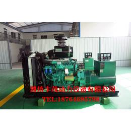 养殖用150千瓦三相电压 发电稳定柴油发电机组