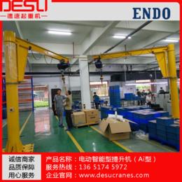 供应DESU电动平衡吊-智能电动葫芦-厂家直销