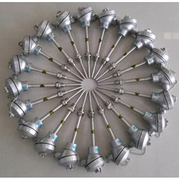 WRNK-201固定卡套螺纹装置式铠装热电偶