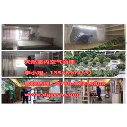 广州萝岗办公室除甲醛咨询、办公室除甲醛咨询、天然室内空气治理