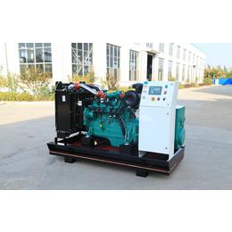 烟台餐余垃圾分类处理150KW燃气发电设备 餐厨垃圾处理项目
