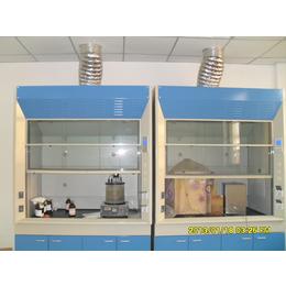 廠家直銷全鋼木通風柜,實驗室家具實驗臺藥品柜