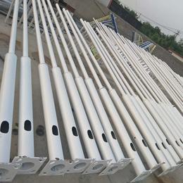 热镀锌喷塑 灯杆灯柱 耐坚固不生锈 河北利祥批发生产