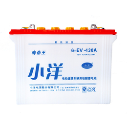 6-EV-130A 旅游观光车电池