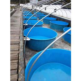玻璃钢水槽  养鱼槽 养殖水槽 安全无毒无味 耐腐蚀 耐高温