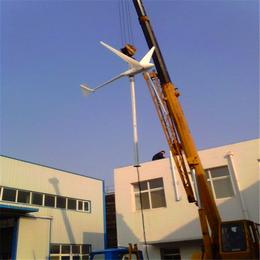 风力发电机全套 220v小型家用价格
