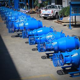 广东45KW雪橇式潜水轴流泵