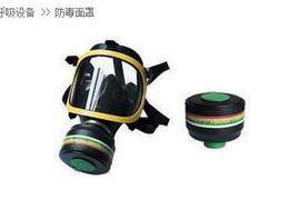IMPA331238全面罩防毒面具
