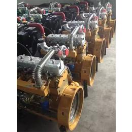 密云小铲车发动机潍坊ZH4100柴油机工程喷油泵BQ柴油泵