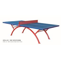 室内高档乒乓球桌耐脏比赛标准乒乓球台案子比赛家用乒乓