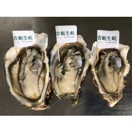 乳山牡蛎厂家 乳山海蛎子批发