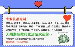 定制个性礼品-礼品-上海天蝎插座惠民价格