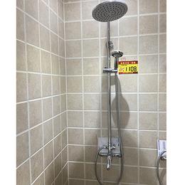 益高卫浴PL0962-66-f花洒