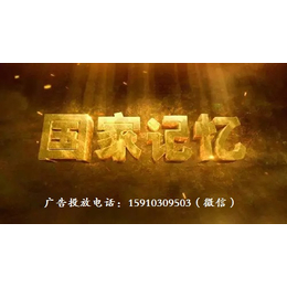 2018年CCTV-4央视四套--国家记忆广告价格