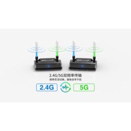 帕旗PAT590双频率1080P无干扰高清影音无线传输器
