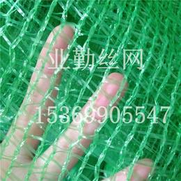 业勤供应3针绿色工地盖土网 城市环保防尘绿化网 煤场防尘网