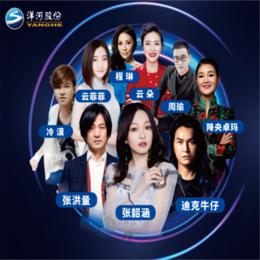 洋河演唱會 九江大勝文化傳媒有限公司縮略圖