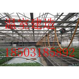 专业温室设计-让建大棚和堆积木一样简单-量身定做-高效保质