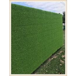 品质草坪网生产工 绿色草坪网现货人造草坪网