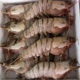 冷冻大虾  海鲜大虾 缩略图