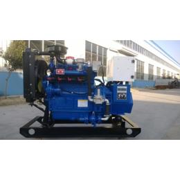 广安15kw千瓦电热联产燃气发电机 养鸡场低噪音气体发电机组