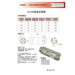 HLHG大流量定制款超高压系列