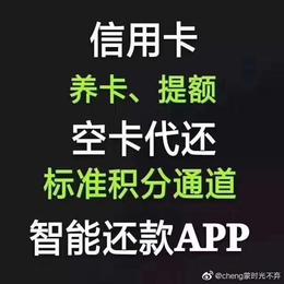 上海护壹代还APP定制开发