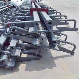 福建莆田  型钢伸缩缝 梳齿板伸缩缝 板式橡胶伸缩缝