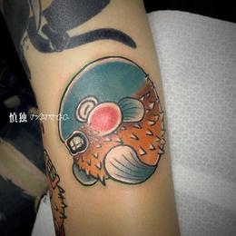 可爱河豚鱼纹身