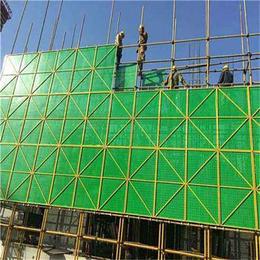 东莞喷塑爬架网-建筑外围喷塑爬架网-施工安全保护伞