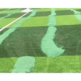 伊犁epdm跑道颗粒-绿健塑胶-epdm跑道颗粒厂