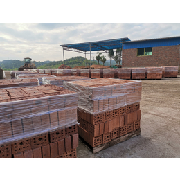 大量供应 水泥砖  多孔 水泥砖 13孔砖