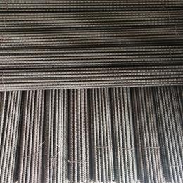内江市重龙镇厂家直销 镀锌丝杆 1-3米牙条 吊杆 4.8级缩略图