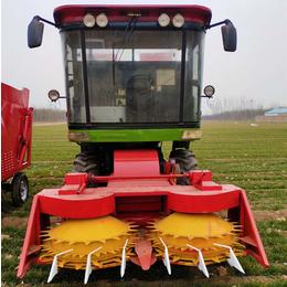 福建大型高速转盘青储机 液压牧草收获机 皇竹草收割机