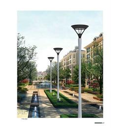 小区太阳能庭院灯-诚泰道路照明(在线咨询)-阳泉太阳能庭院灯