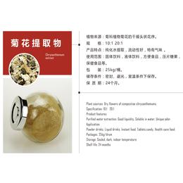 南京泽朗生产菊花提取物菊花粉承接菊花提取代加工