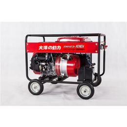 电启动190A汽油发电电焊两用机