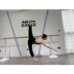 舞蹈培训机构  中国舞软开课程进行中缩略图