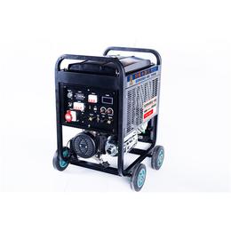 大泽动力280A氩弧焊发电电焊机