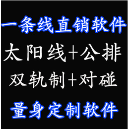 石家庄双轨直销系统软件  双轨直销结算软件