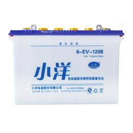 6-EV-120B型 电动轿车电动三轮车电瓶
