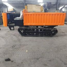 稻田山地运输车厂家-山东冠林机械(在线咨询)-山地运输车