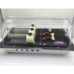 medlab 大鼠无创血压测量系统