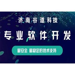 石家庄分销商城系统开发  微信小程序制作