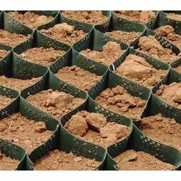 高强土工格室-四川土工格室-泰安路飞复合材料(多图)