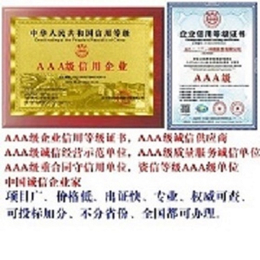 中国行业十大品牌证书申请流程